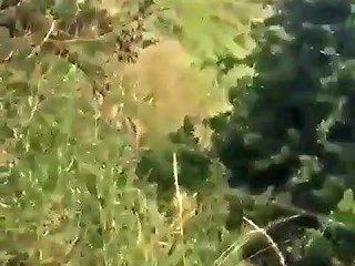 Huge Booty African Milf Free Free Iphone Milf Porn Video 37